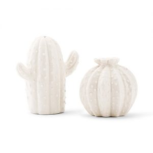 Novelty Cactus Salt & Pepper Shakers wedding favour